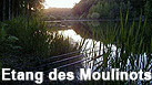Etang des Moulinots - An exclusive, picturesque and tranquil carp fishery in the Champagne region of France