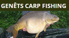 Exclusive use including accommodation & optional food package for up to 4 people. Established as a carp fishing lake since 2004 with a stock of stunning looking carp to over 60lb.
